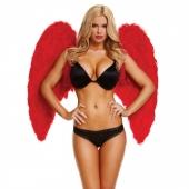 Большие красные крылья
